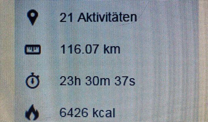 Trainingsbericht Januar 2015